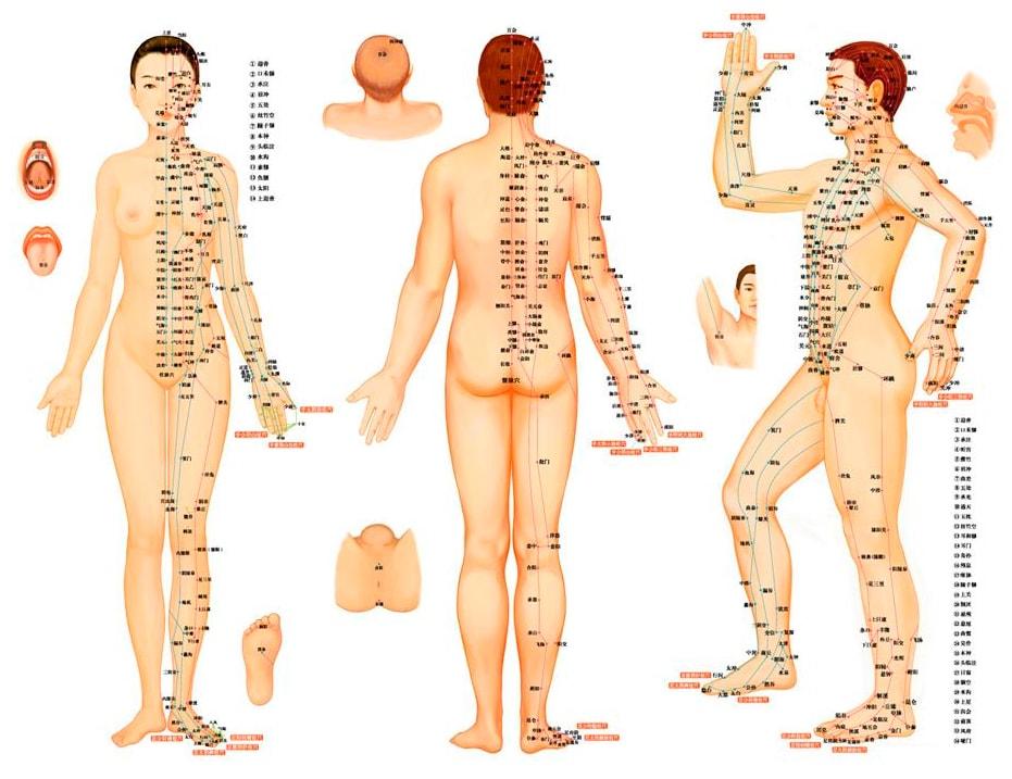 время работы врачей в поликлинике москвы
